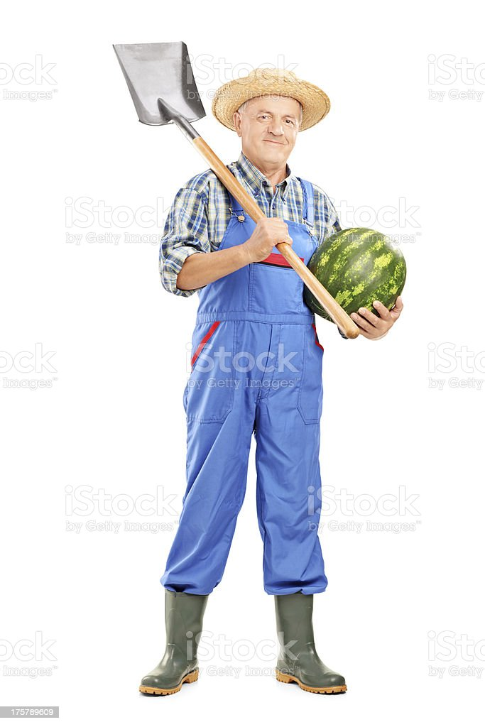 Smiling farmer holding a watermelon and shovel royalty-free stock photo