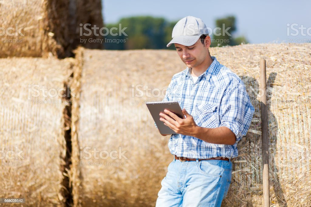Smiling farmer using a tablet stock photo