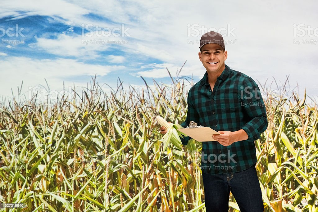 Smiling farmer working in corn farm stock photo