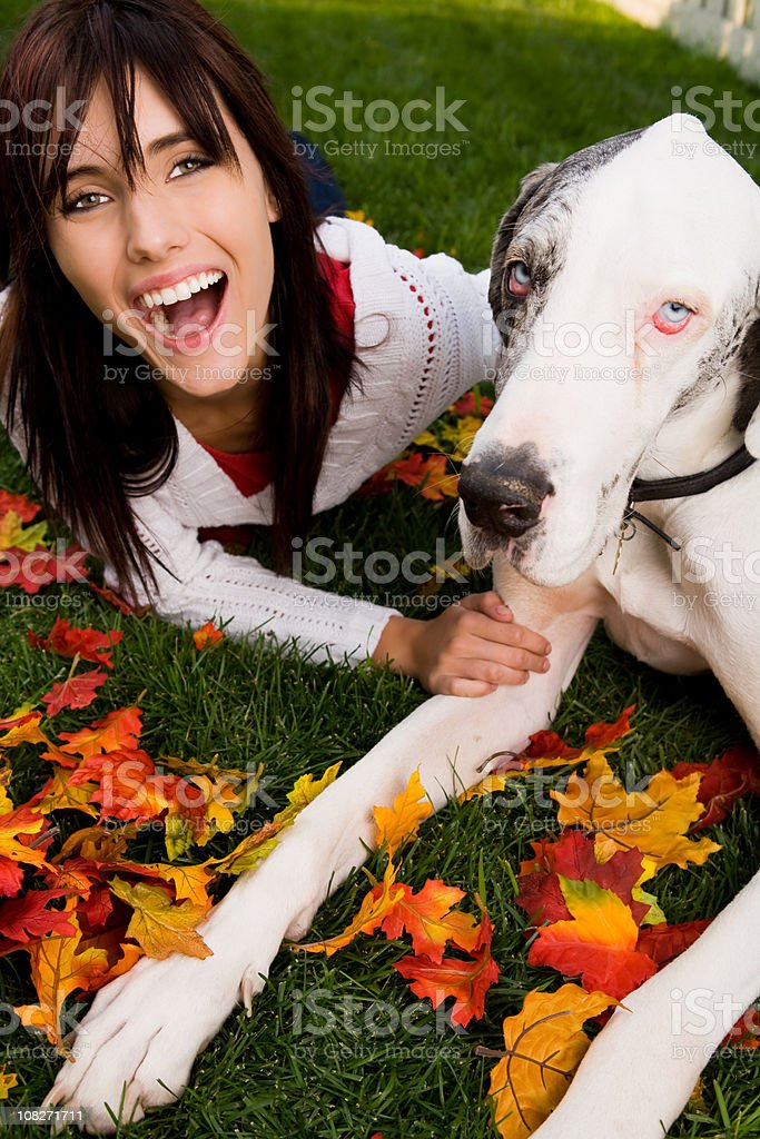 Smiling female bonding with her dog (great dane) stock photo