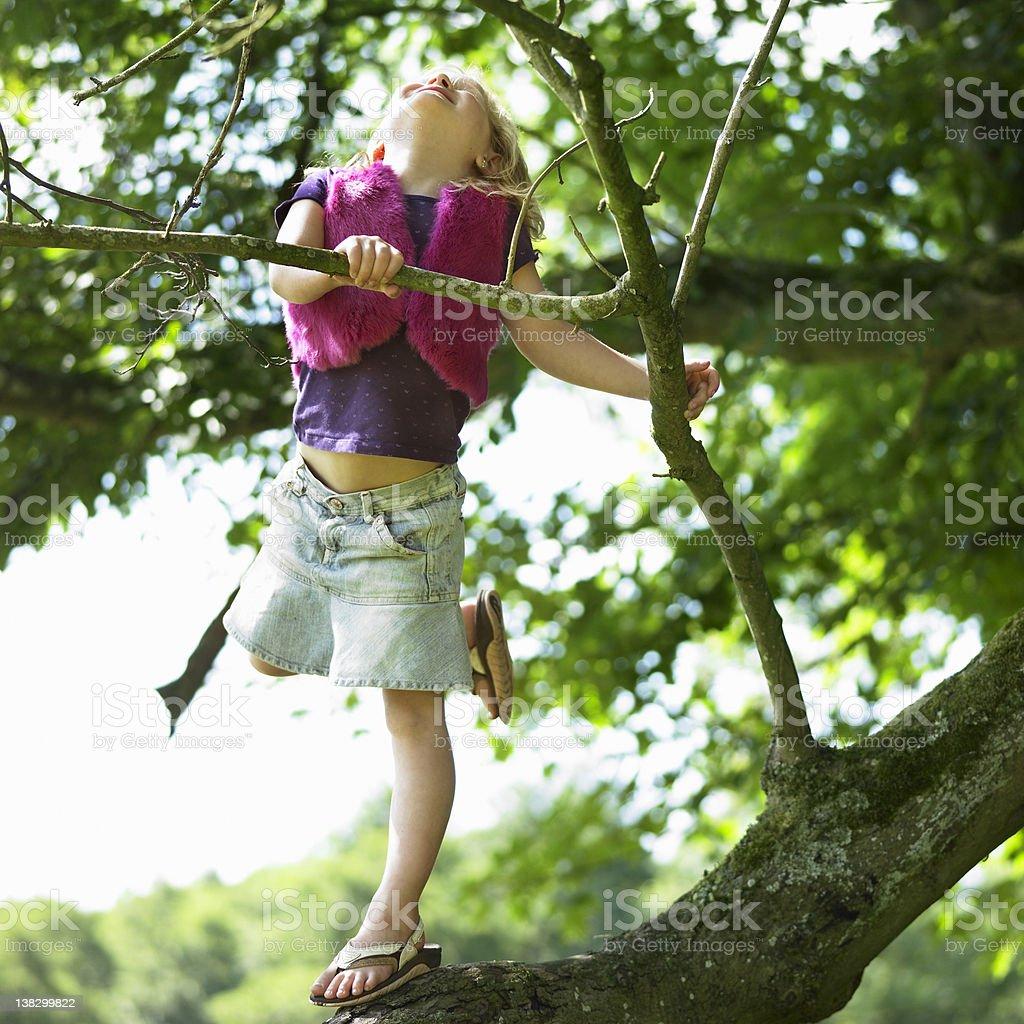 Smiling girl climbing tree stock photo