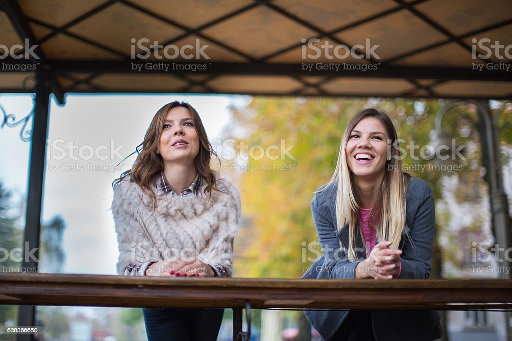 Smiling girlfriends laughing in the park stock photo