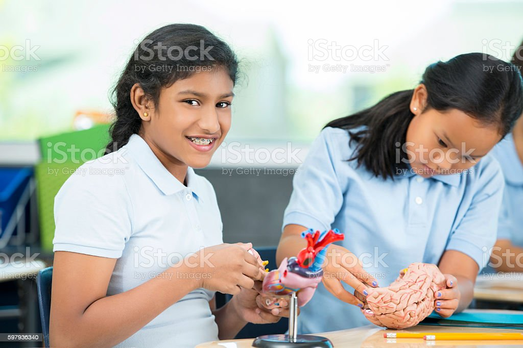 Smiling Indian student working on biology model in school classroom stock photo