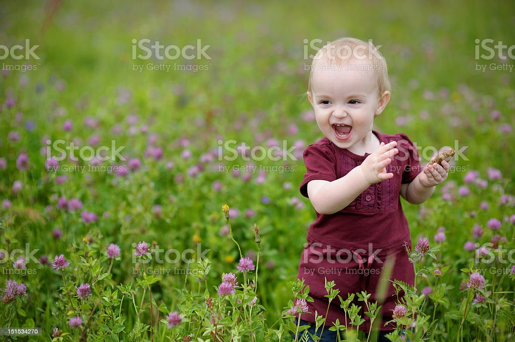 Smiling little baby in a meadow royalty-free stock photo
