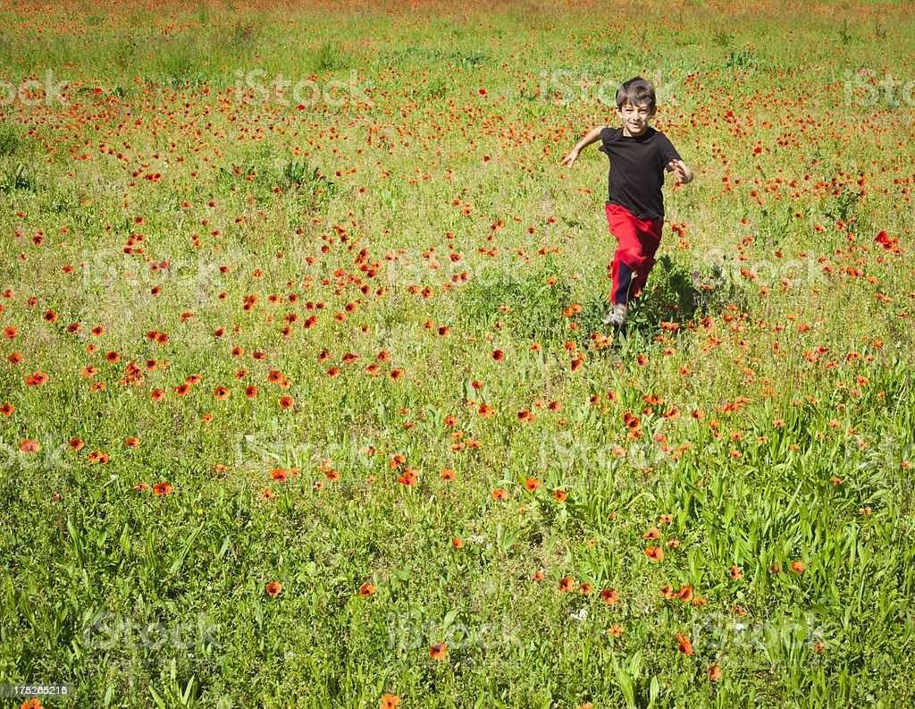 Smiling Little Boy Running In A Poppy Meadow royalty-free stock photo