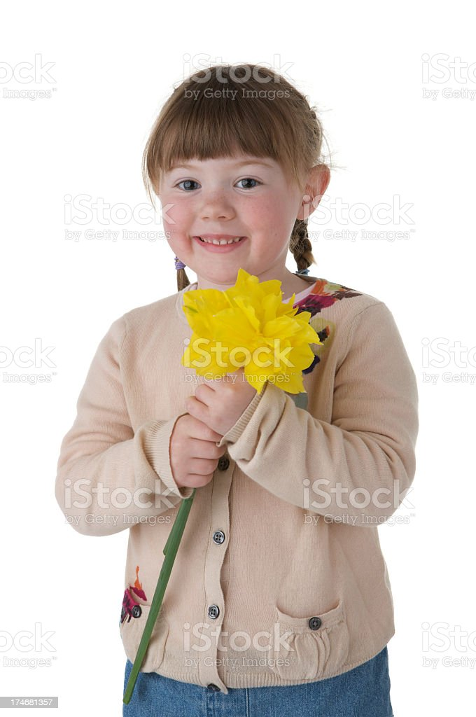 Smiling little girl holding yellow daffodil flowers on white background royalty-free stock photo
