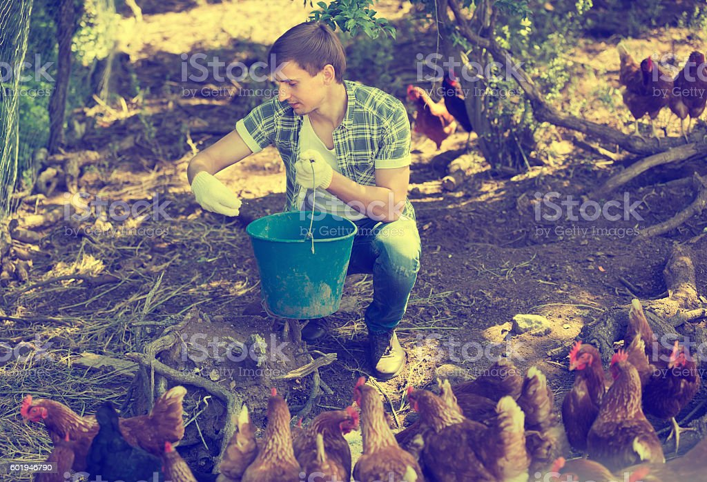 Smiling man farmer on poultry farm outdoors stock photo
