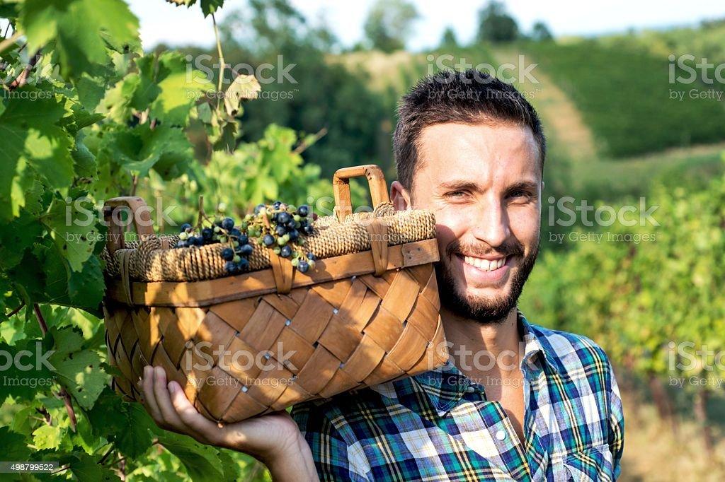 Smiling Man in Vineyard stock photo