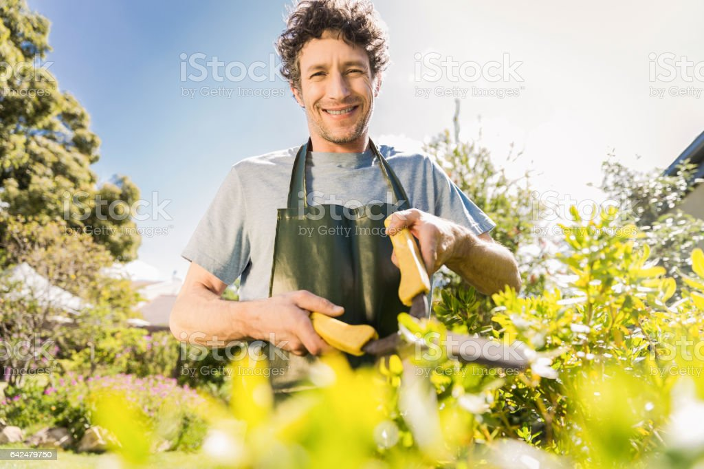 Smiling mature man pruning plants in garden stock photo