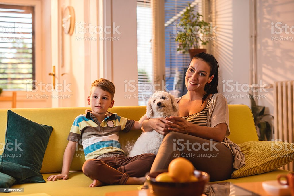 Smiling mother and son enjoying with their dog at home. stock photo