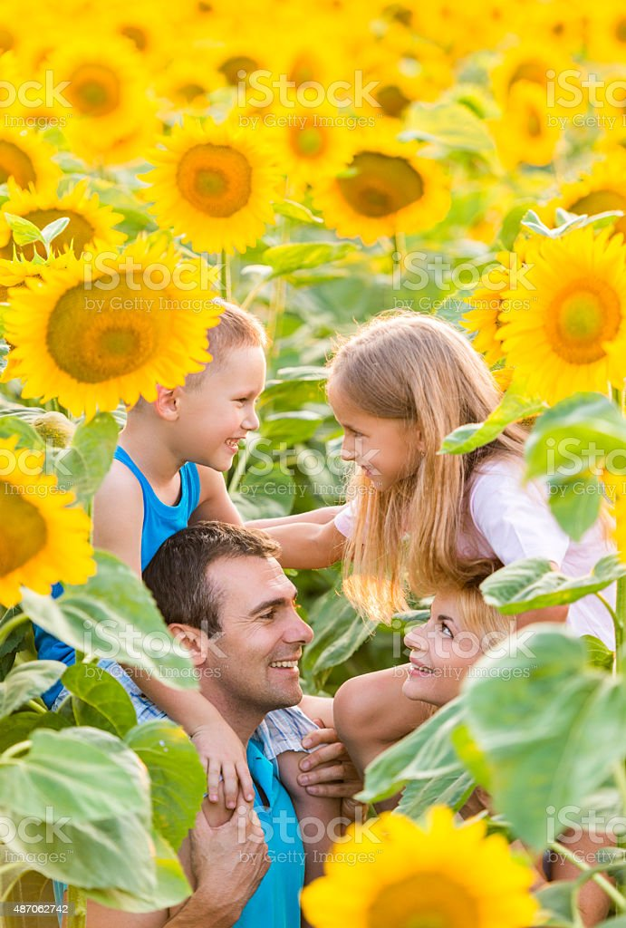 Smiling parents carrying on shoulders their children among sunflowers. stock photo