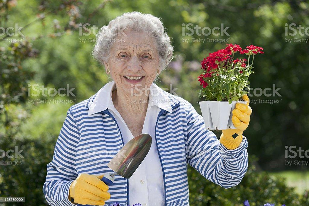 Smiling Senior Woman Holding Flowers royalty-free stock photo