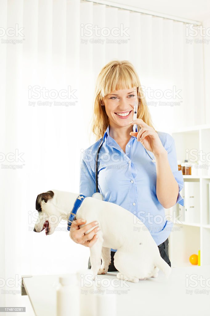 Smiling Vet Giving Vaccine To Dog. royalty-free stock photo