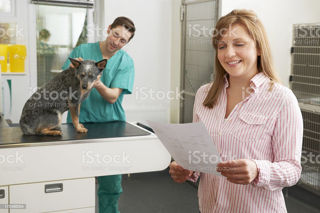Smiling Woman Looking At Bill In Veterinary Surgery stock photo