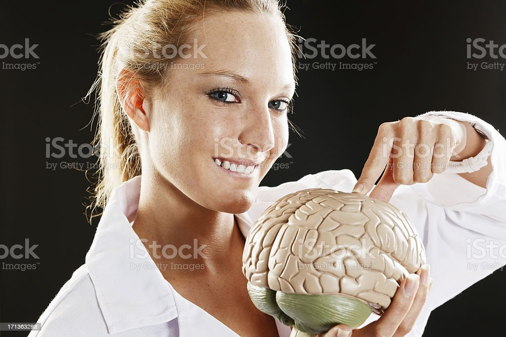 Smiling woman medical professional points at model brain stock photo