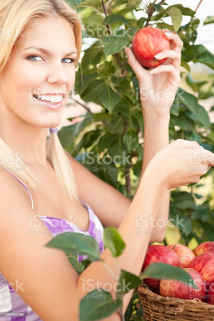 Smiling woman picking red apple royalty-free stock photo