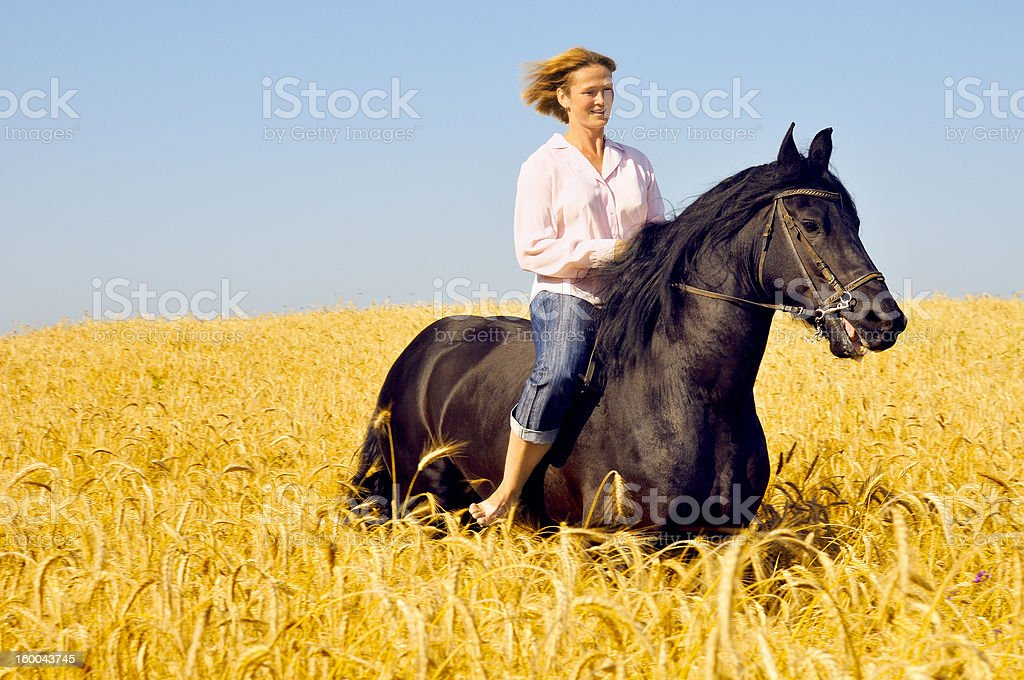 smiling woman rides a pretty horse royalty-free stock photo