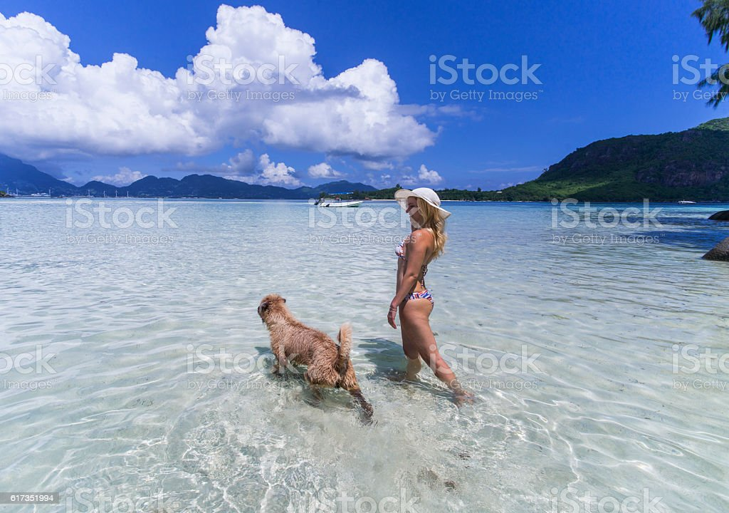 Smiling woman walking with her pet in shallow water. stock photo