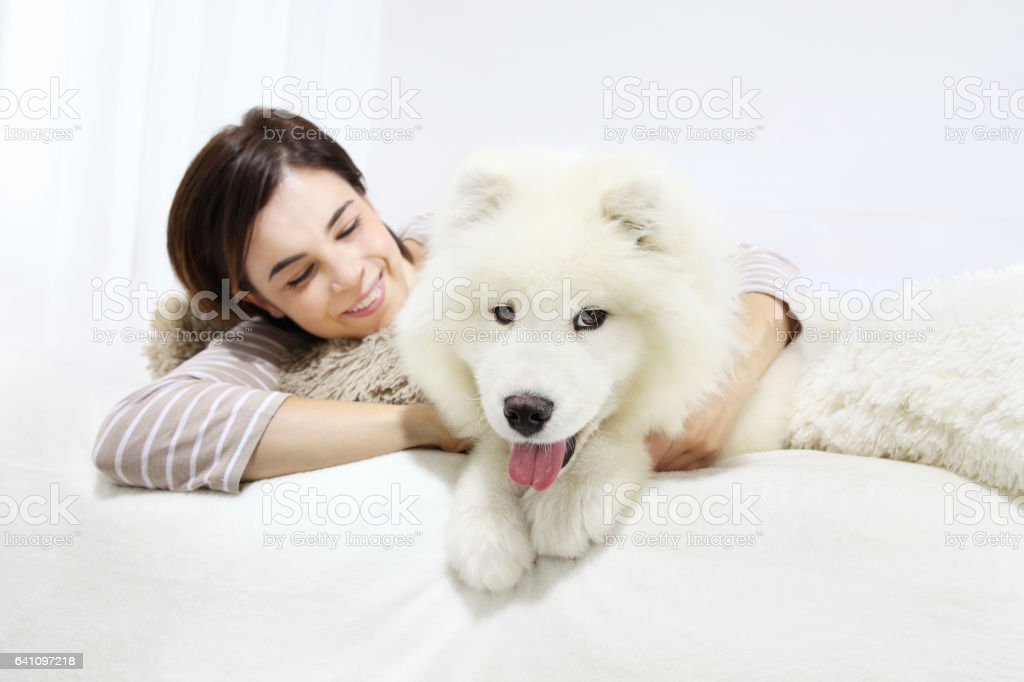 Smiling woman with pet dog stock photo