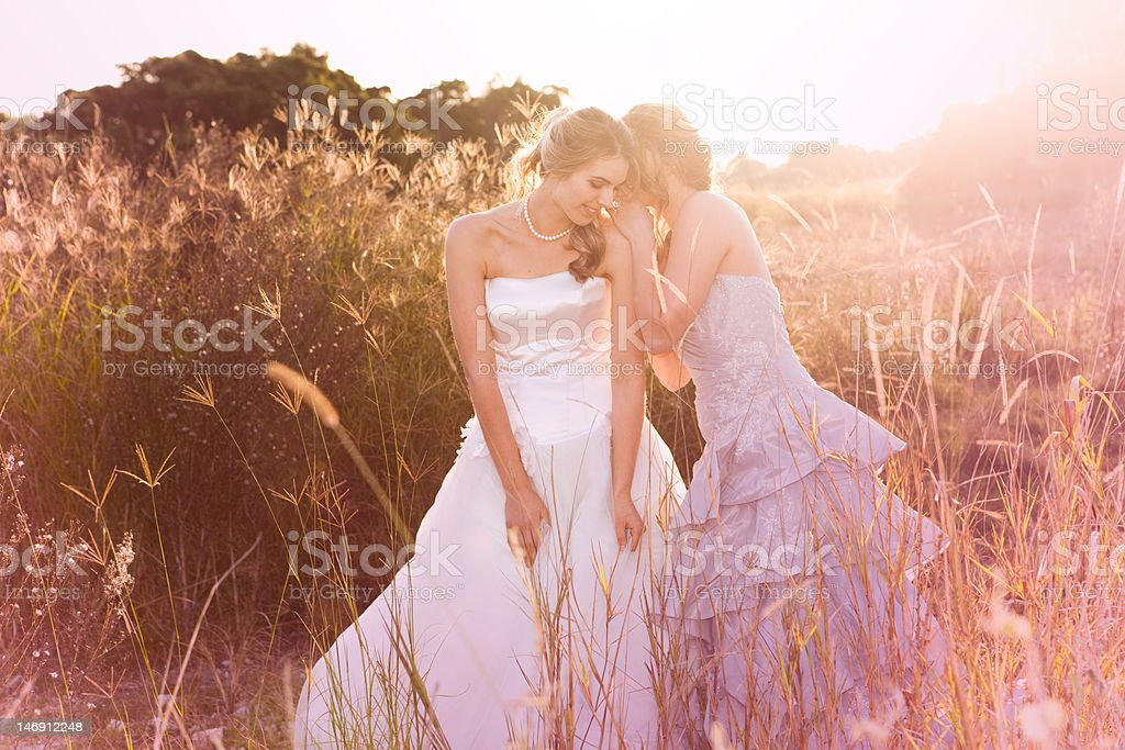 Smiling Young Bride Listening To A Secret stock photo