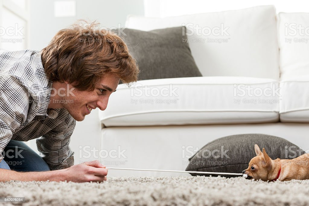 Smiling young man having a tug of war with dog stock photo