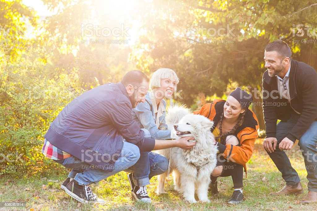 Smiling young people stroking a dog in park stock photo