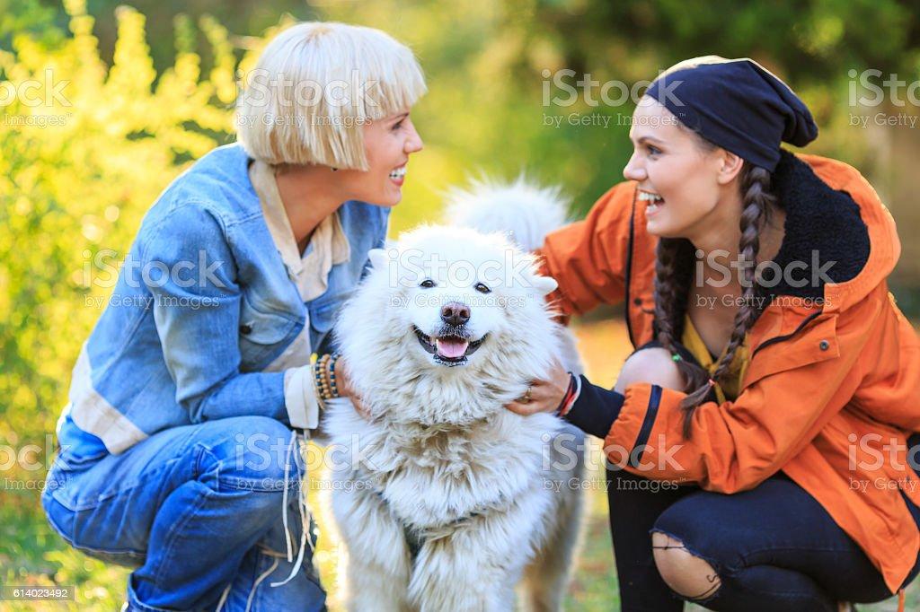 Smiling young women caressing a samoyed dog stock photo
