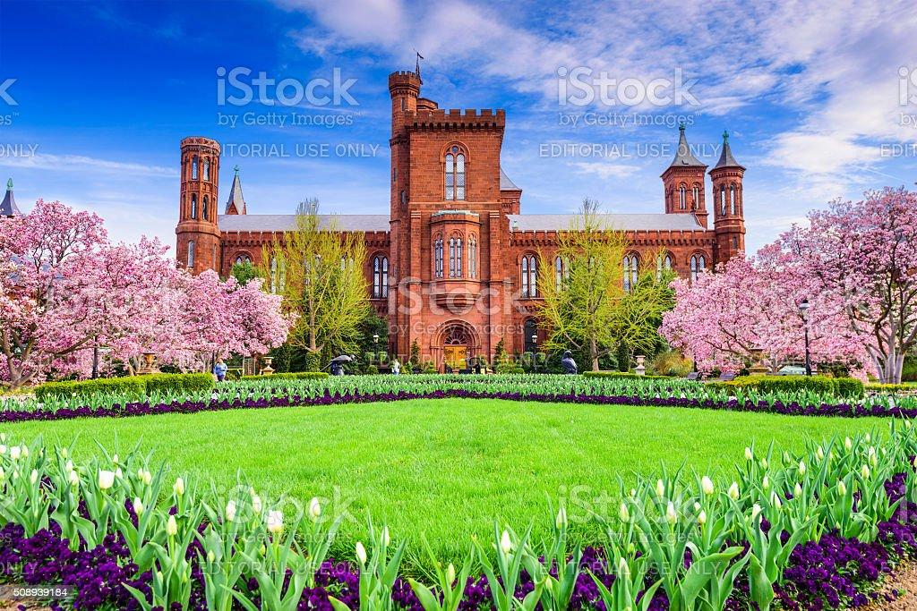 Smithsonian in DC stock photo