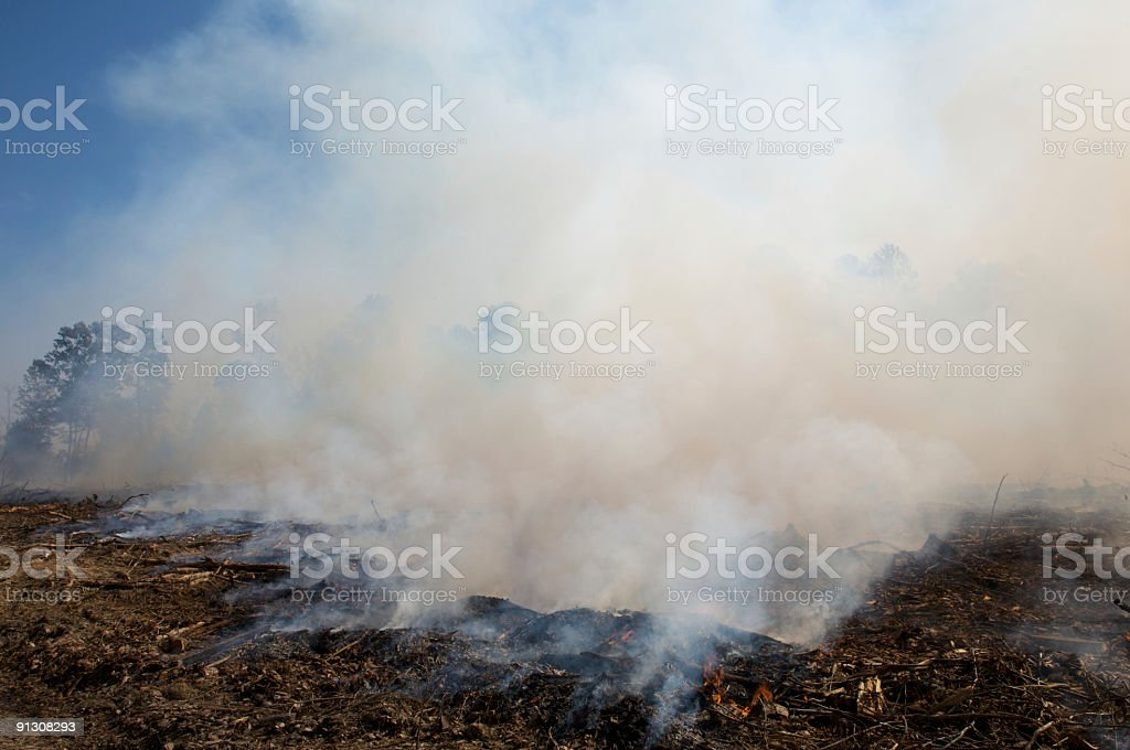 Smoke from a prescribed fire burn stock photo