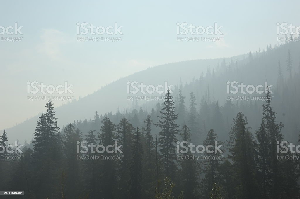 Smoke from Fire in Washington stock photo