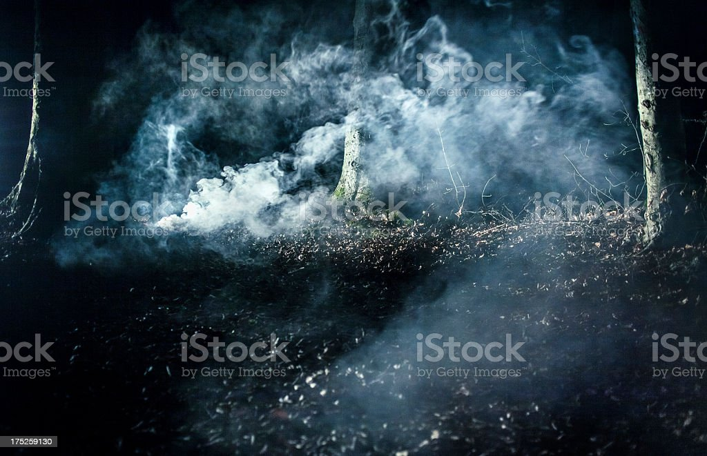 Smoke in spooky forest royalty-free stock photo