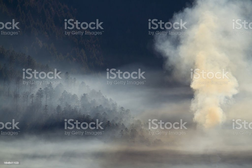 Smoke of a fir tree forest fire in mountain forests stock photo