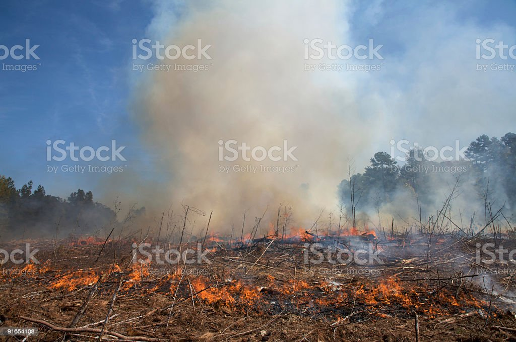 Smoke plume from a controlled fire stock photo