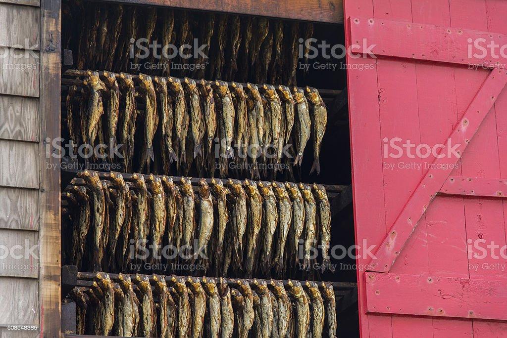 Smoked herrings. stock photo
