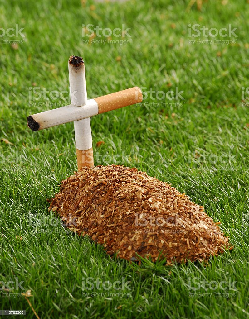 Smoked life. royalty-free stock photo