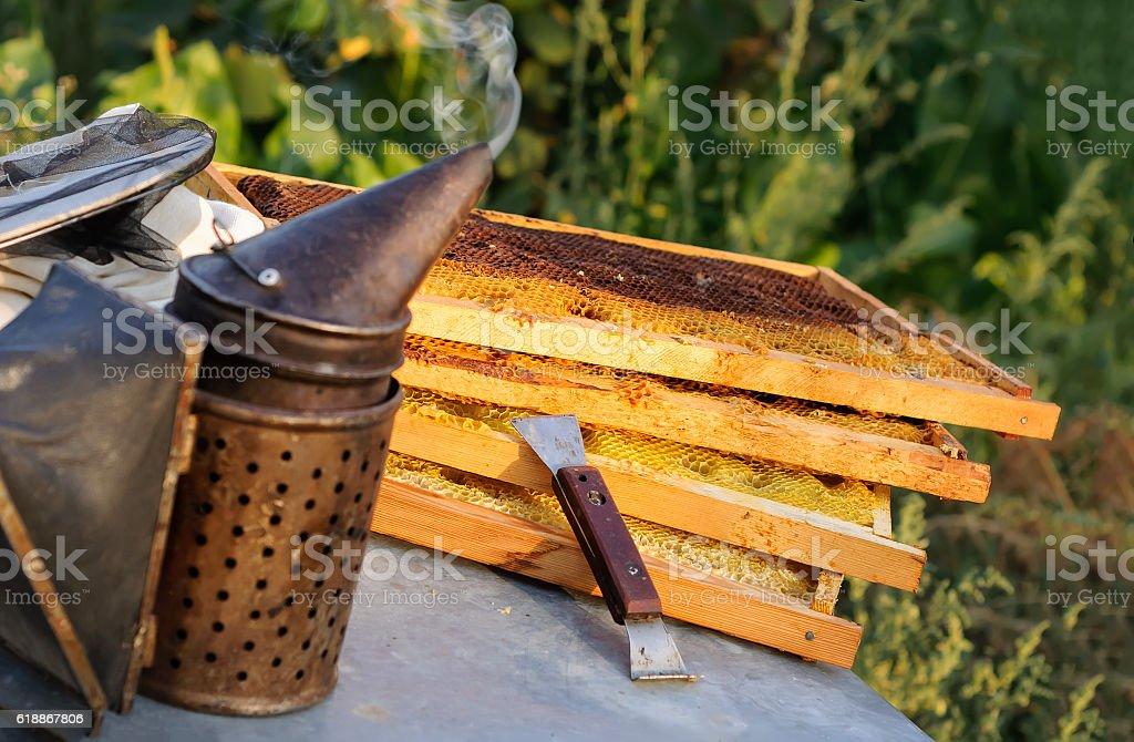 Smoker for bees, beekeeper tool. honeycomb stock photo