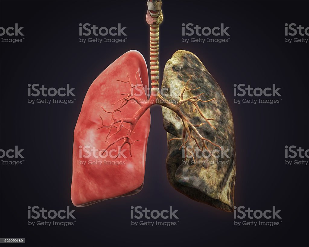 Smokers and Healthy Lung stock photo