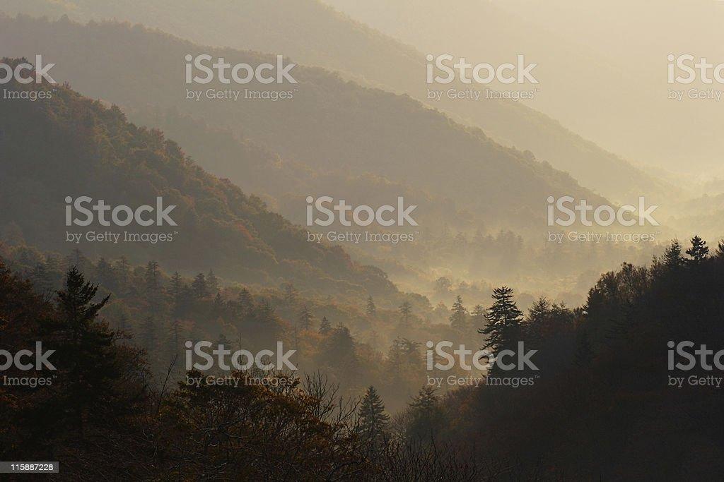 Smokey Autumn Valley stock photo