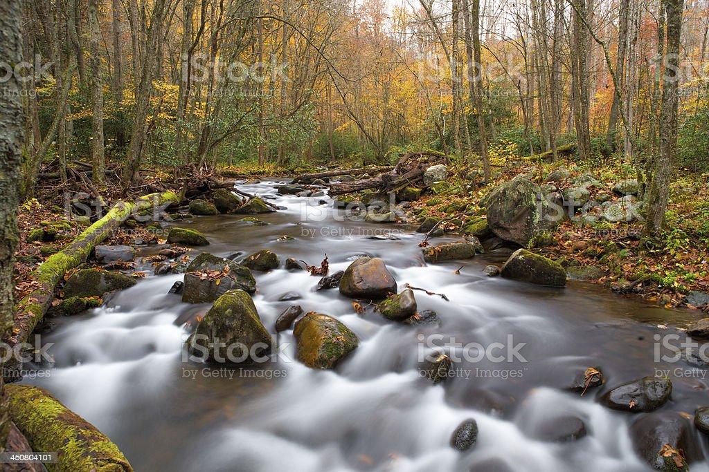 Smokey mountain river in the fall. royalty-free stock photo
