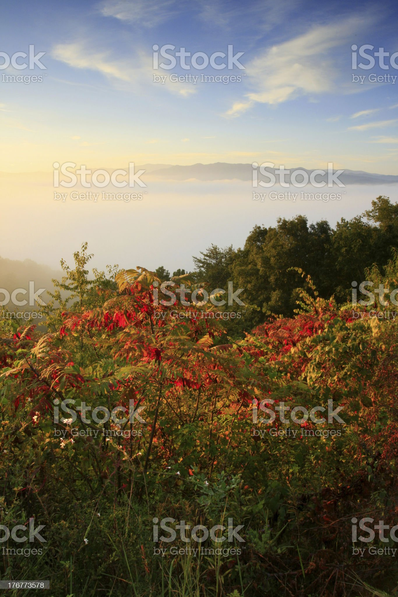 smokies autumn sunrise royalty-free stock photo