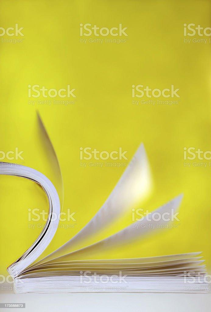 Smoking Book royalty-free stock photo