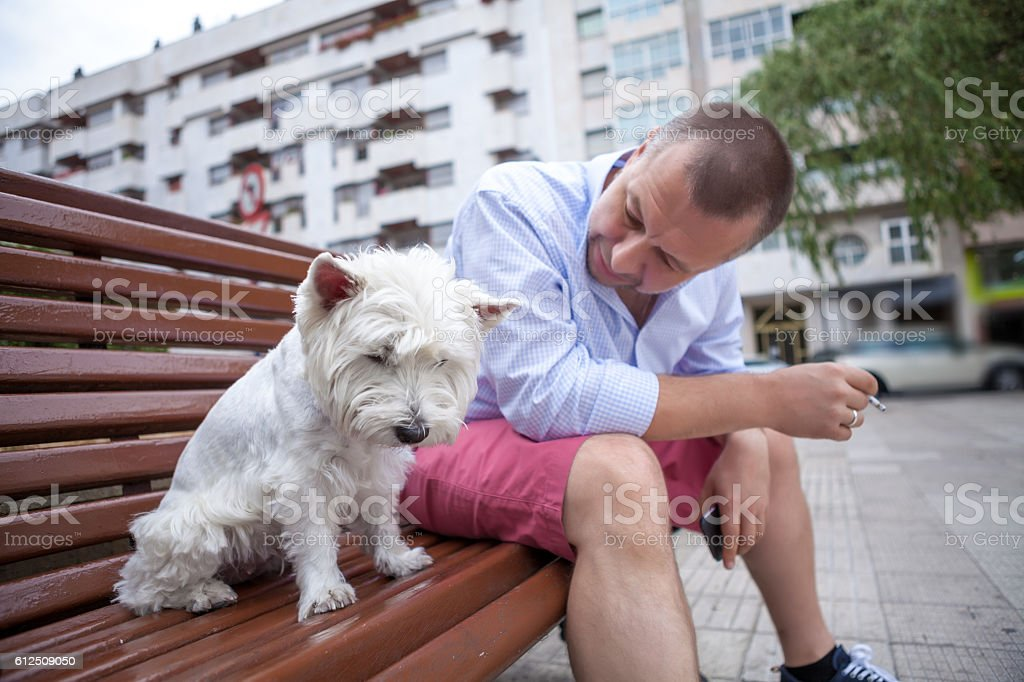 Smoking man with the dog in the city stock photo