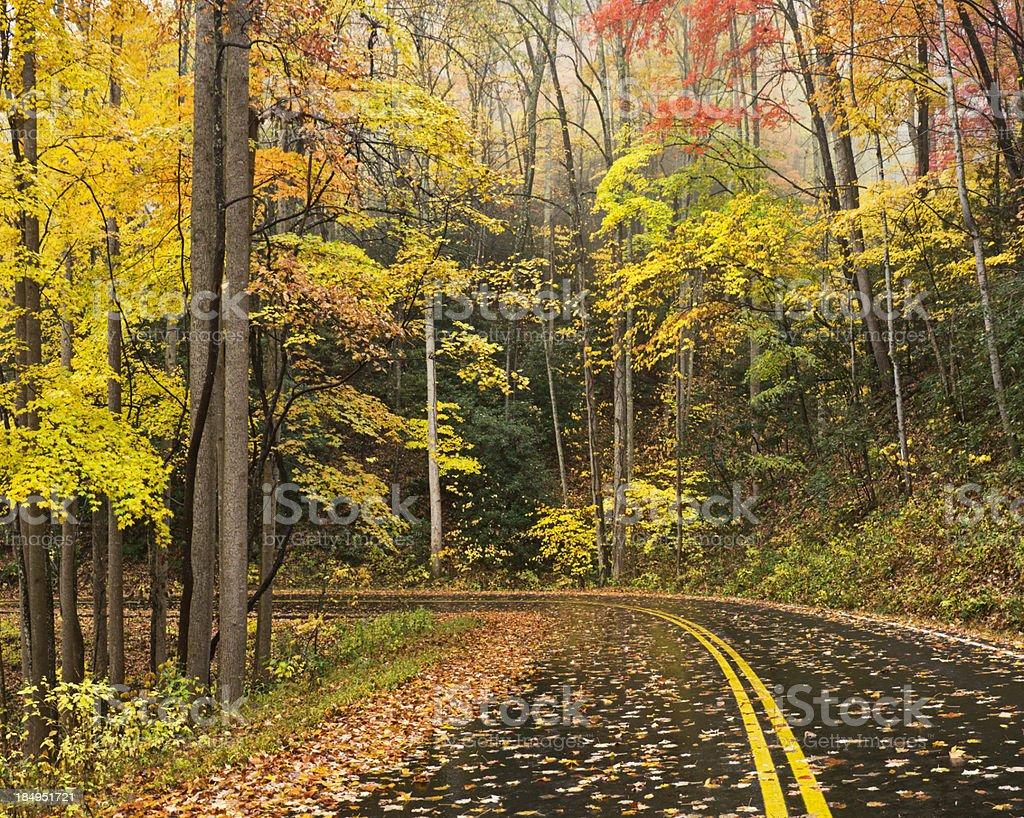 Smoky Mountain Autumn Roads Series royalty-free stock photo