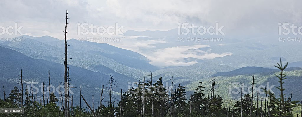Smoky Mountain Morning Fog Panoramic stock photo