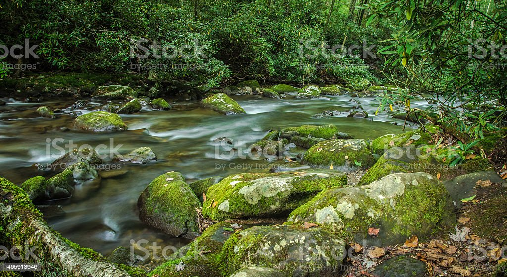 Smoky Mountain River stock photo