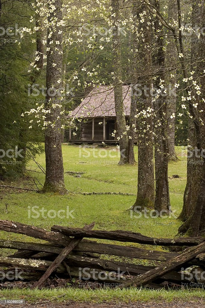 Smoky Mountain Springtime royalty-free stock photo