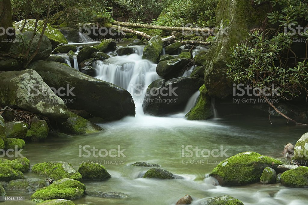 Smoky Mountain Stream royalty-free stock photo