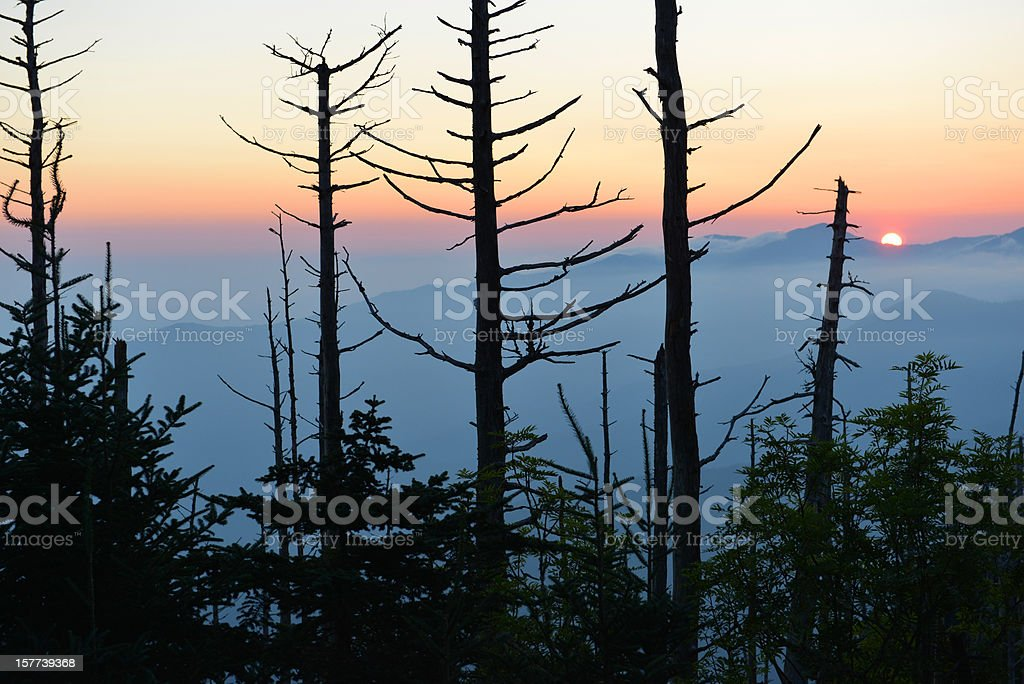 Smoky Mountain sunrise from Mt. LeConte stock photo