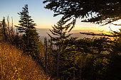 Smoky Mountain Sunset Landscape At Clingman's Dome