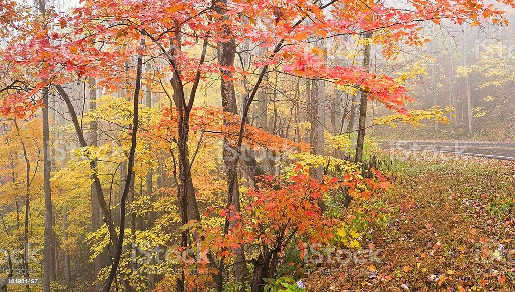 Smoky Mountains Autumn Panorama royalty-free stock photo